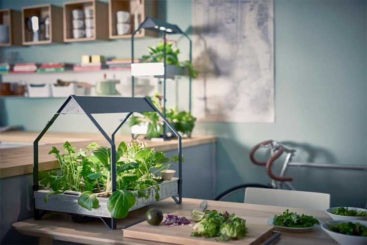 No Muss No Fuss Indoor Gardening with IKEAs New Hydroponic