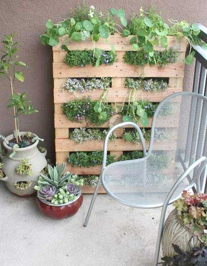 upcycled-pallet-herb-garden